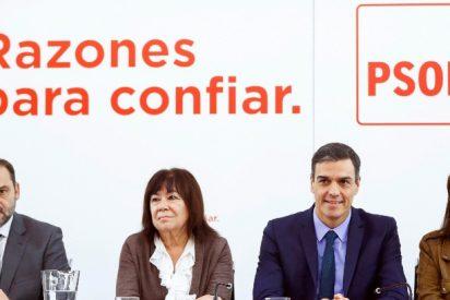 Pedro Sánchez coloca a todos sus amigotes del PSOE en puestos públicos, con sueldos opíparos