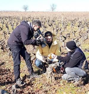 """Poda y botillo en """"Aquí la Tierra"""" de TVE"""