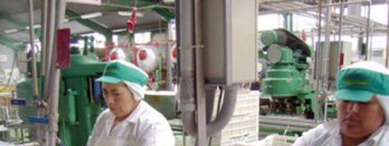 Perú: ¿Queremos empresas peruanas competitivas?