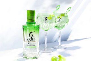 El regalo más especial para brindar en el Día del Padre: G'Vine, una ginebra unconventional by nature