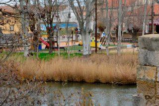 Palencia: Una pareja arroja a su bebé recién nacido a un río helado
