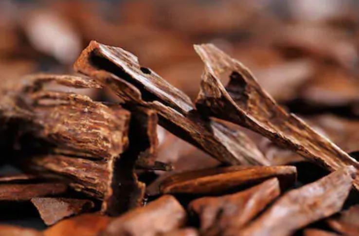 madera de sándalo - perfumes