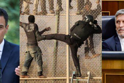 Las xenófobas medidas migratorias de Pedro Sánchez que demuestran que sólo quieren inmigrantes de lujo