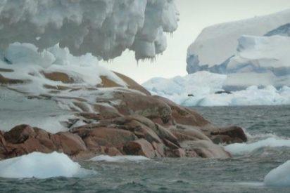 El calentamiento global desvela una isla oculta en la Antártida