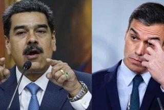 Narco-cargamento récord de los amigos de Sánchez: Belice incauta un inmenso alijo de cocaína que llegó en un avión de la Venezuela chavista