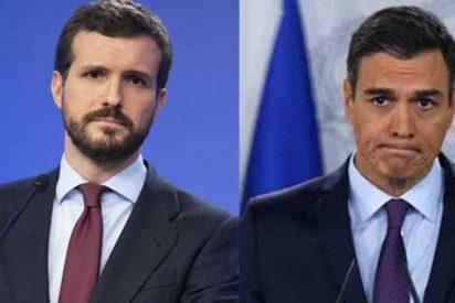 El PP de Casado ya es otra vez la primera fuerza política española y supera al PSOE en cuatro escaños