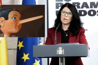 Coronavirus: estamos en manos de ministros 'pinochos' y de expertos que hablan como 'misses'