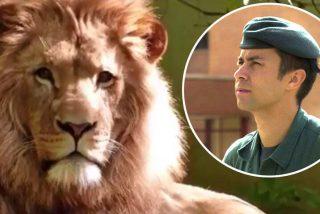 Homenaje a un león: la Guardia Civil despide al teniente coronel Gayoso, caído en acto de servicio
