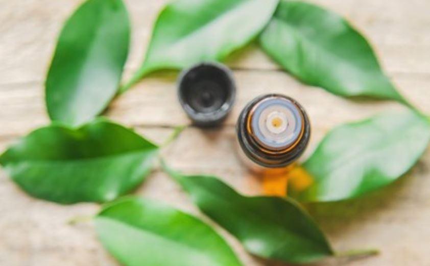 Aceite de árbol de té contraindicaciones