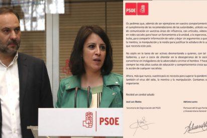 """Juan Pardal: """"Este PSOE es de vergüenza ajena"""""""