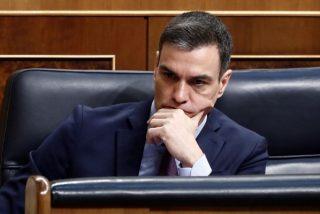 Se la meten doblada al Gobierno: la segunda tanda de test rápidos de Sánchez ¡no funciona tampoco!