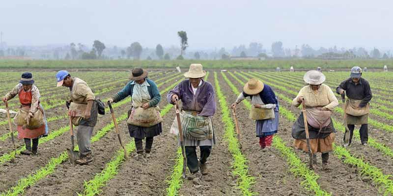 Las 4 consecuencias 'mortales' del COVID-19 en las economías de Latinoamérica