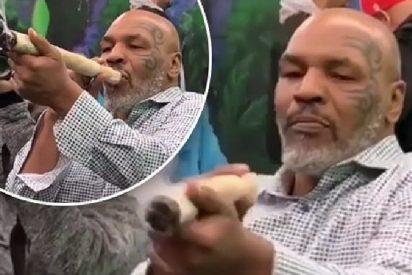 """Mike Tyson: """"Mi vida cambió desde que me fumé un sapo"""""""