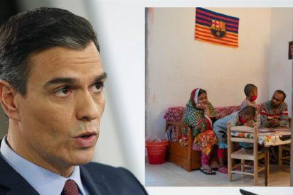 Con esta foto presenta The New York Times a la 'infancia española' del socialista Sánchez