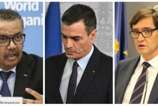 La OMS deja en bolas al Gobierno Sánchez: