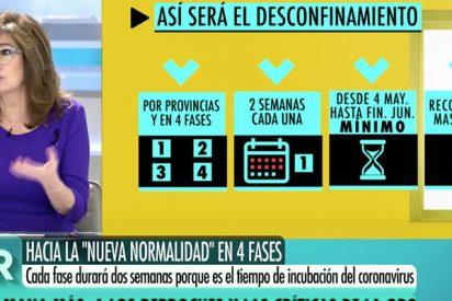 """Ana Rosa contra el plan maestro de Sánchez: """"No tiene sentido poder ir a una terraza con un familiar y no a su casa"""""""