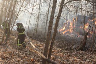 Chernóbil: Los incendios forestales arden cerca de la planta nuclear, la segunda zona con mayor radiación en el mundo
