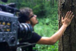 Italia: Una visita al bosque que cuenta el cambio climático