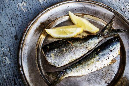 Las sardinas: ¿Sabes cuáles son sus asombrosas propiedades para tu salud?