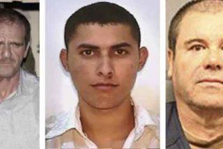 """""""El Chapo"""", """"El Güero"""" y """"El chino Ántrax"""": Las traiciones sangrientas del Cártel de Sinaloa"""