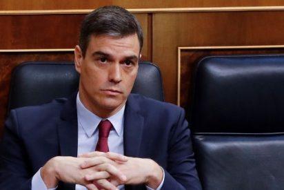 """""""¡Sinvergüenzas!"""": Sánchez aprueba el Ingreso Mínimo Vital cuando hay familias sin cobrar el ERTE"""