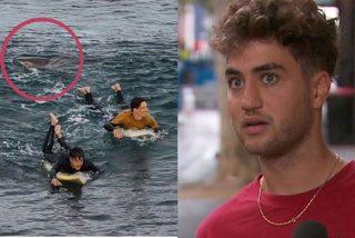 Dylan Nacass, surfista francés, se pelea a puñetazos con un tiburón y sobrevive al combate