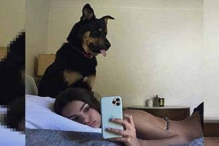 Emily Ratajkowski deja 'tieso' a su perro gracias a su último selfie
