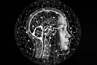 Qué revela el experimento más grande sobre la inteligencia jamás hecho en el mundo