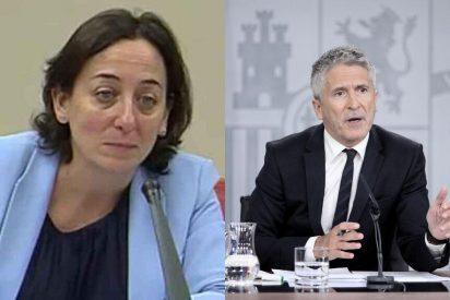 """Antonio Velázquez: """"Una juez valiente, un Gobierno cobarde"""""""