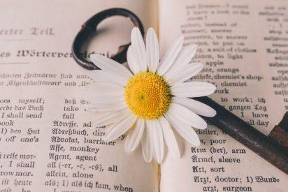 Chistes: el del que aprendía inglés, el de la farmacia y el de la vida en internet