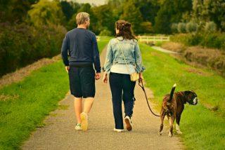 Adelgazar: cuánto tiempo debo caminar y cuántos pasos debo dar por minuto para perder peso