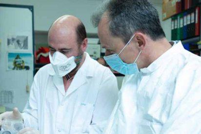 """El científico español de la vacuna contra el SARS-CoV-2 denuncia al Gobierno: """"No hay estabilidad y estoy solo en el proyecto"""""""