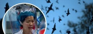 Shi Zhengli, subdirectora del Instituto de Virología de Wuhan: