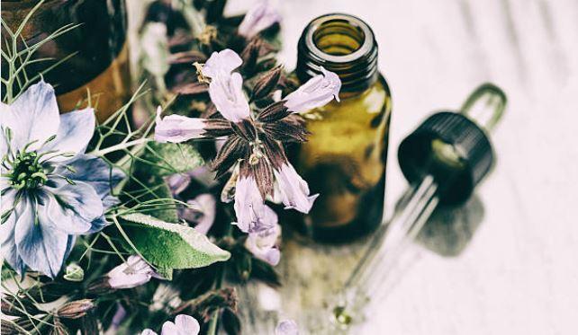 tintura madre y extractos de plantas