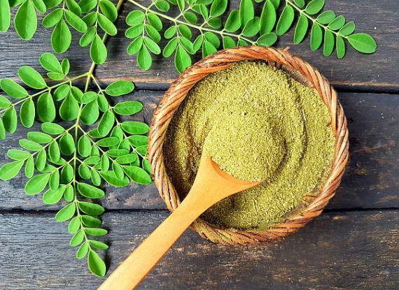 moringa oleifera fuente de fibra