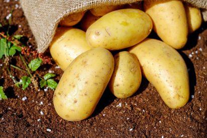 Cómo cocinar las patatas de forma rápida y saludable