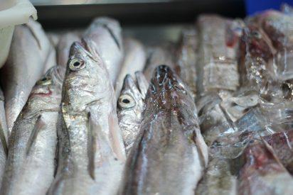 Cómo descongelar el pescado: Trucos para hacerlo de manera segura