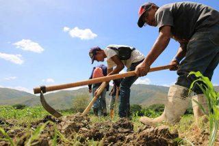 Mitzy Capriles de Ledezma: En el campo es la cosa