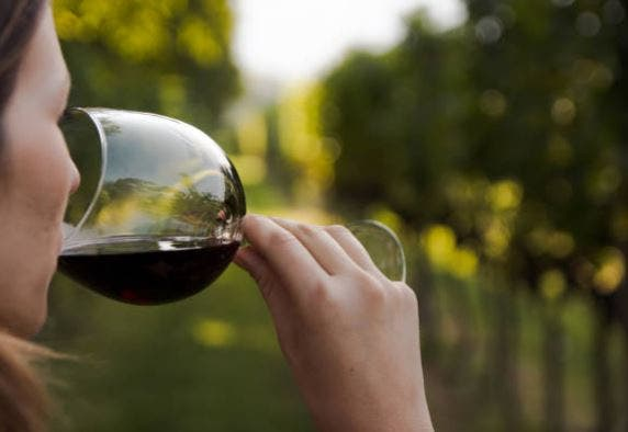 profundidad del vino cata
