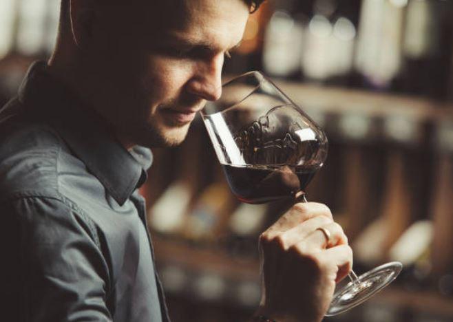 longitud del vino cata