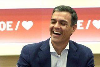 Todo lo que has trabajado hasta hoy en 2020, se lo han llevado para sus cosas Pedro Sánchez, sus ministros y colegas