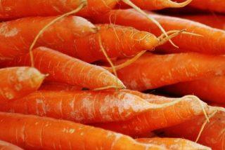 Zanahoria: ¿Conoces sus grandes beneficios para la salud?