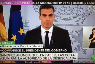 Un doble o una paliza: las redes divagan sobre el rasguño en la nariz de Pedro Sánchez