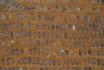 El drama de Manaos o cuando la selva amazónica se tapiza de tumbas