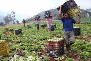 La Venezuela chavista al borde de la hambruna: la escasez de gasolina agudiza la crisis en los campos
