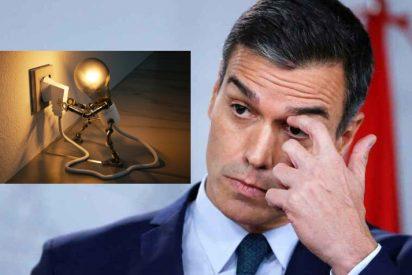 """El socialista Sánchez no recortará su sueldo, ni el de ministros y altos cargos alegando que necesita un gobierno """"robusto"""""""