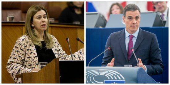 La última del Gobierno Sánchez y su 'transparencia': niega a una senadora del PP la cifra de contratos públicos realizados durante el estado de alarma
