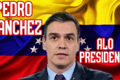 """El pobre argumento de la portavoz Montero para defender los 'Aló Presidente' de Sánchez: """"No creo que moleste a nadie"""""""