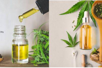 Diferencias entre el aceite de cáñamo y CBD