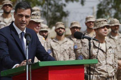 """Un teniente coronel del Ejército se enfrenta a Sánchez y hiela Moncloa: """"No te debemos lealtad, patán mentiroso"""""""